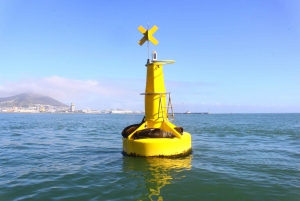 Cape Town: V&A Waterfront Harbor Boat Tour