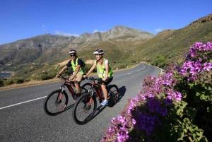 Chapmans Peak Coastal Ebike Tour