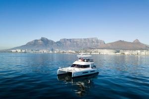Coastal Catamaran Cruise