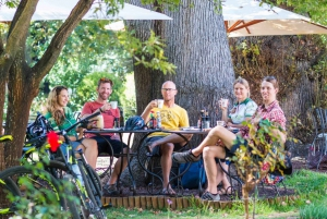 Constantia Wine Valley Bicycle Tour