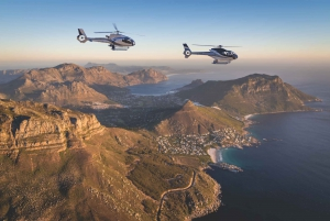 From Cape Peninsula Scenic Helicopter Flight