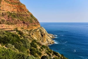 From Cape Town: Cape Point & Boulders Beach Full-Day Tour