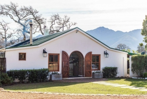 From Cape Town: Franschhoek Vineyards Bike Tour with Lunch