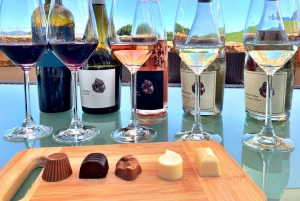 From Cape Town: Full-Day Cape Winelands Tour with Tastings
