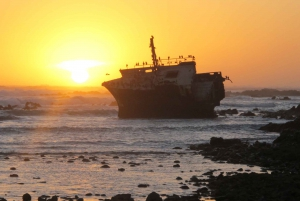 From Cape Town: Winelands and Whale Coast 2-Day Tour