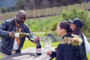 From Cape Winelands Full-Day Private Tour