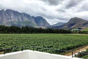 From Franschhoek Vineyards Bike Tour with Lunch