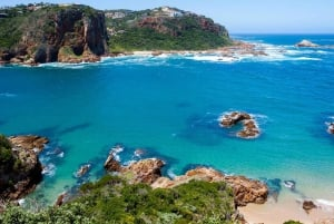 From Garden Route, Addo and Winelands 7-Day Tour