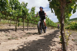 From Half-Day Winelands E-Bike Tour