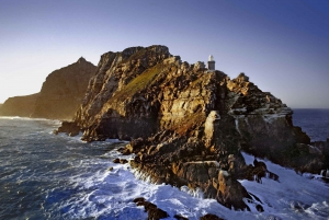 From Private Cape Point and Peninsula Day Tour