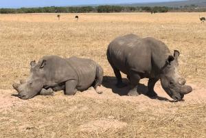 From Wildlife Safari, Olive, Beer & Wine Tasting