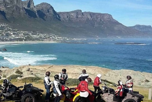 Full-Day Cape Peninsula Tour on a Sidecar