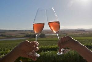 Full-Day Shared Wine Tasting Tour