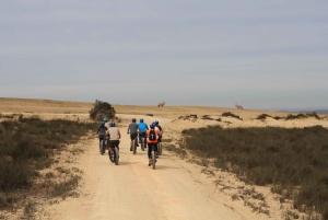 Guided e-Bike Safari Tour