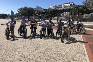 Half-Day e-Bike City Tour