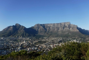 Lion's Head and Signal Hill Morning Trail Run