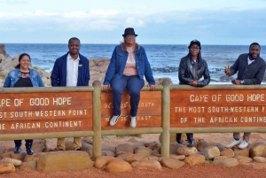 Private Full-Day Cape of Good Hope Tour