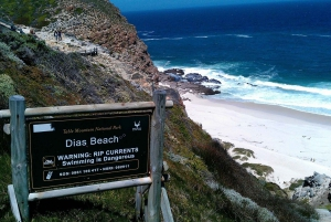 Robben Island Tickets, Penguins, and Private Cape Point Tour