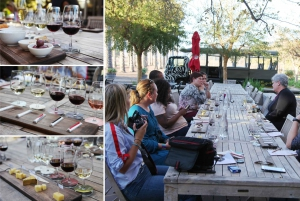 Robertson: Wine Appreciation Tour from Cape Town
