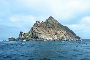 Simon's Town: Boat Tour to Cape Point