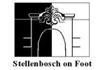 Stellenbosch on Foot
