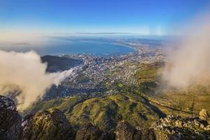 Supersaver: Cape Peninsula & Table Mountain Private Day Trip