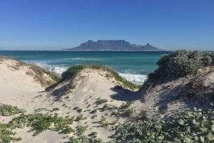 Table Bay Coastal E-bike Tour