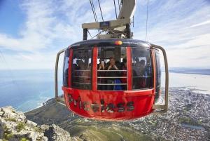 Table Mountain & Chapman's Peak Drive Guided Tour