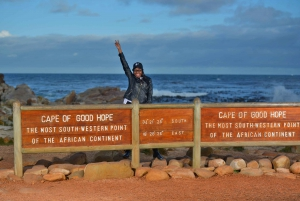 The Cape Point Instagram Small Group Tour