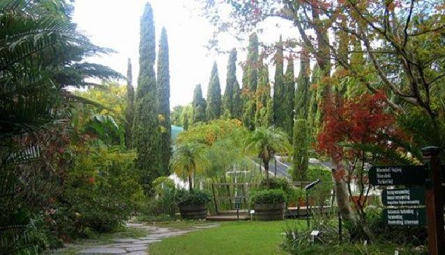 University of Stellenbosch Botanical Gardens