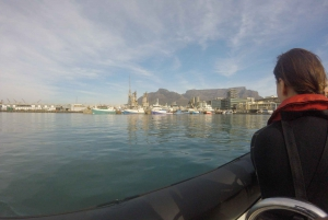 V&A Waterfront Harbor Boat Tour