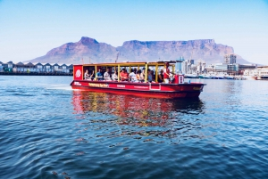 V&A Waterfront: Seal & Harbour Cruise