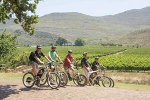 Winelands E-Bike Tour and Tasting Experience