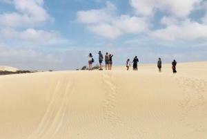 Boa Vista Island: Full-Day Northeasten Tour & Ervatão Beach