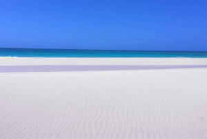 Boa Vista Island: Half-Day Quad Tour to Santa Monica Beach