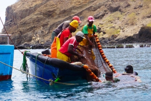 Cape Verde: Relaxing Tarrafal Bay Boat Trip and Beach Day