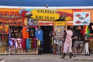 From Praia: Full-Day Sal Island Tour