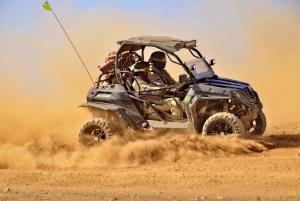 Sal: 4-Hour 4WD SSV Buggy Island Adventure
