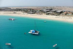 Sal: All-Inclusive Half-Day Lounge Catamaran Cruise