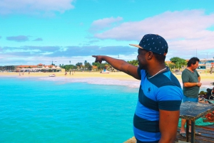 Sal Island: Guided Full-Day Highlights Tour with Lunch