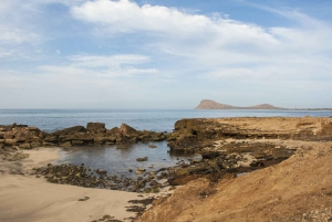Sal: Santa Maria Beach Turtle Nesting Experience