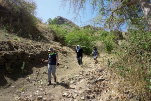 Santiago: Trekking Rui Vaz, Longueira, and Botanical Garden