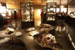 Exposition des cristaux