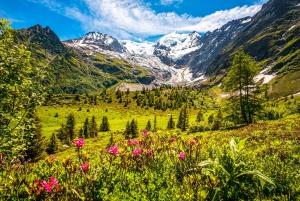 From Geneva: Private Chamonix-Mont-Blanc Day Trip