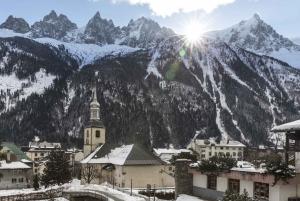 Geneva: Day Trip to Chamonix, Geneva City Tour + Cruise