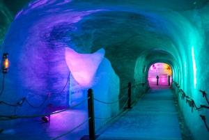 Geneva: Private Chamonix Mont Blanc Day Tour