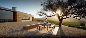 Casa Del Bosque Vineyard