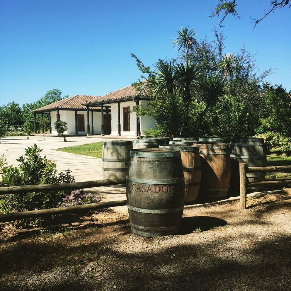 The best wineries in Chile