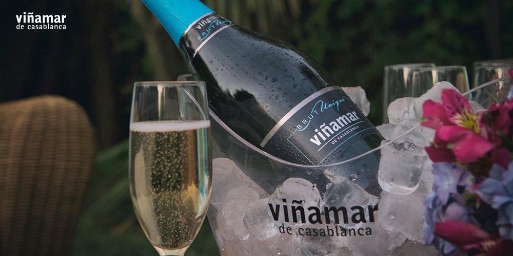 Casa Valle Viñamar Wines