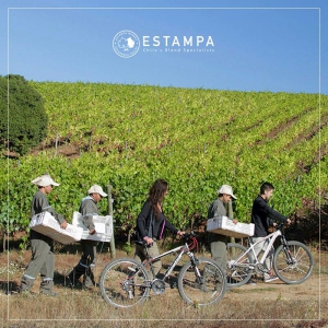 Estampa Winery